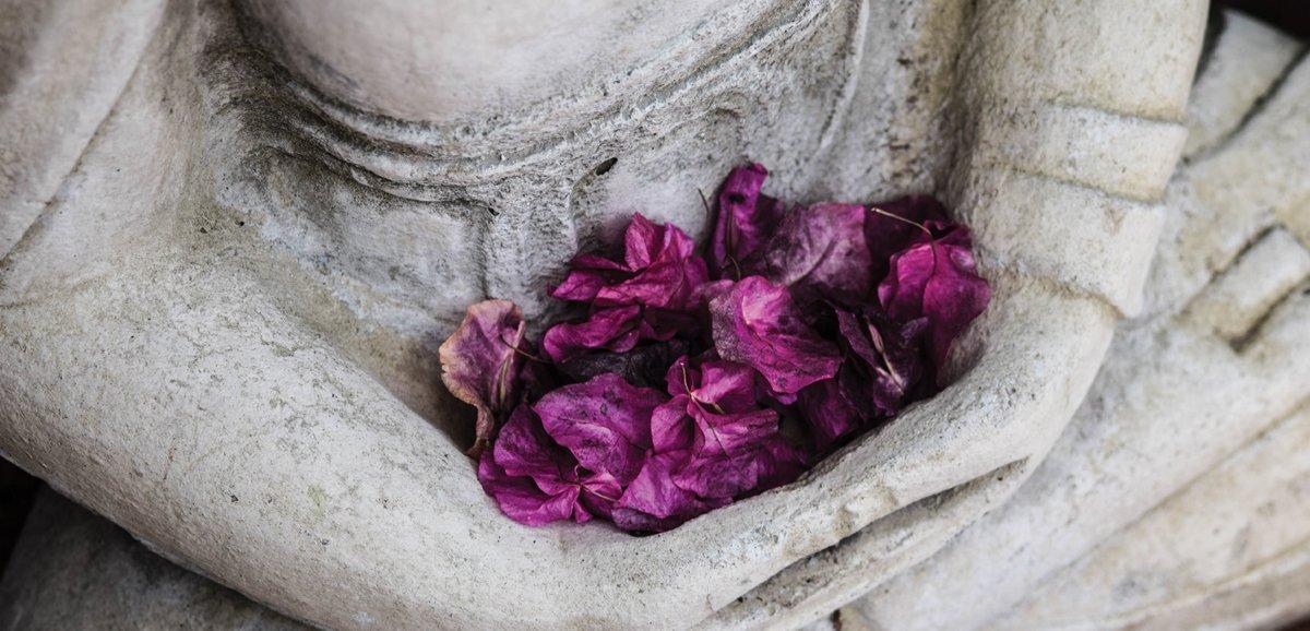 Statua in meditazione