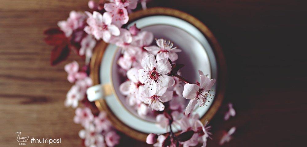 fai fiorire l'armonia con il respiro lunare chandra bheda pranayama
