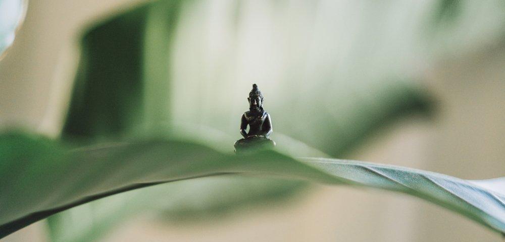 trovare la tua posizione comoda seduta è molto importante durante la tua meditazione, ecco come fare